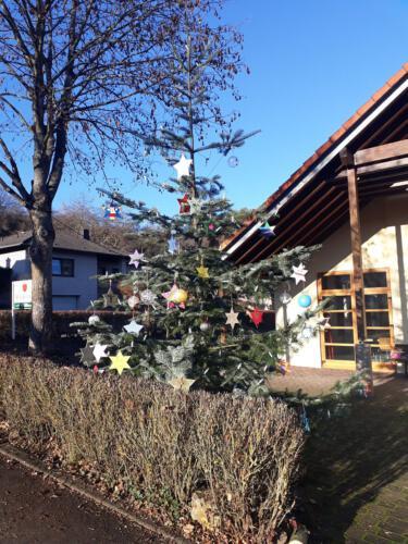 Weihnachtsbaum 2020